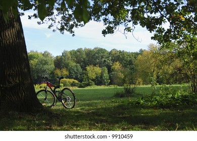 Red bike on a background forest