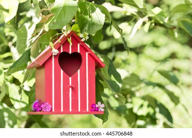 red birdhouse in an apple tree