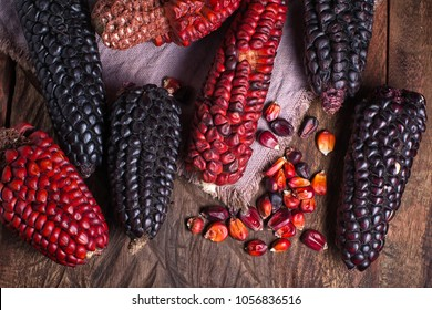red and black heirloom corn cobs from Ecuador on rustic setting