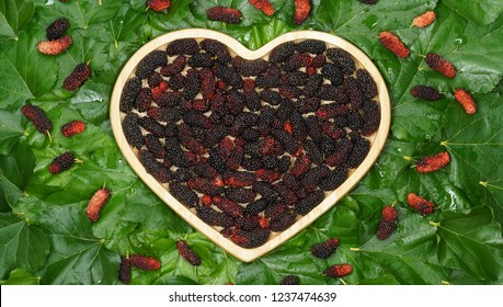 red and black mulberry in wooden plate heart shape on green mulberry leaf background. Mulberries are rich in plant compounds, such as anthocyanins, that contribute to their color and beneficial health
