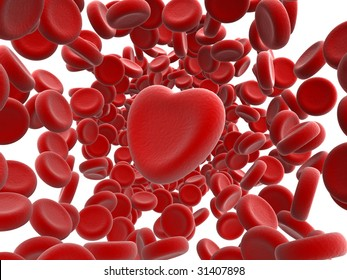 red blood cells and heart isolated