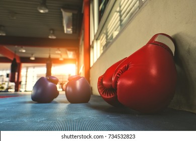 Red and blue boxing gloves beside wall in gym with sunset light