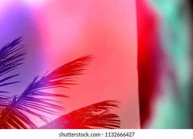 Red, blue and green Color drop in water, photographed in motion. Ink swirling in water. This is a reflection photo of that colourfull water,in background Coconut tree leaves