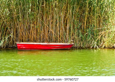 Red Boat Next to Reeds in Green Water
