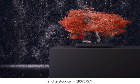 Red Bonsai in front of a black wall