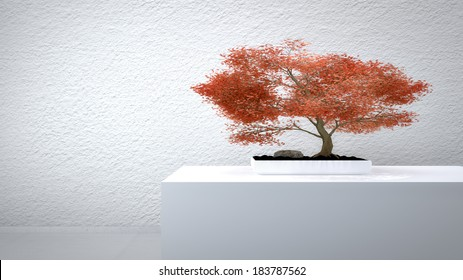Red Bonsai in front of a white wall