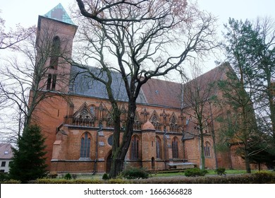 Red brick church among the trees on a foggy day. St. Co-Cathedral John the Baptist in Kamien Pomorski, Poland.