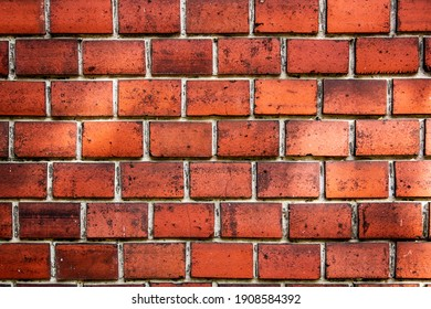 red brick wall with sun bunnies, red brick stone texture