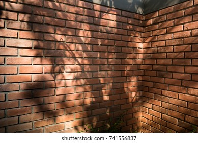 Red brick wall texture background with the shadow of the tree shining down.