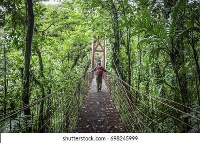 Red Bridge at Monteverde Cloud Forest, Costa Rica