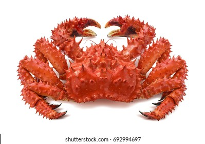 Red brown king crab 2 isolated on white background as package design element
