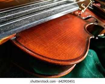 red brown violin on green velvet