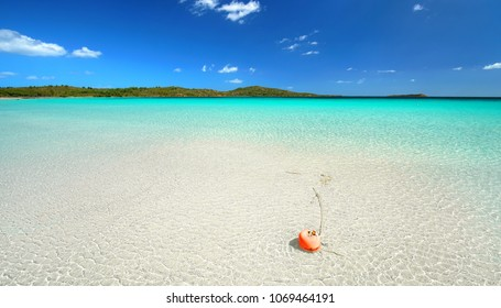 red buoy at the beach lagoon, amazing beach at the island Sardinia