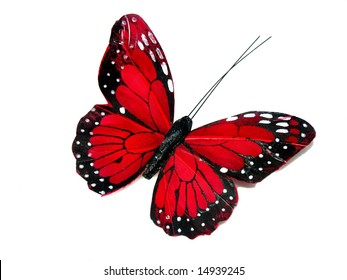 A red butterfly isolated on white