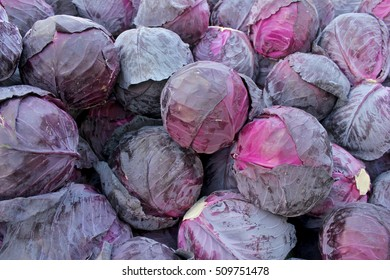 Red cabbages on the market in Bulgaria