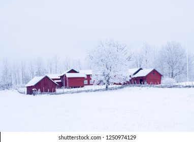 Red cabin in a frosty landscape