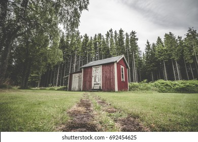 Red cabin in a swedish forest with pine trees with warn planks and weathered paint