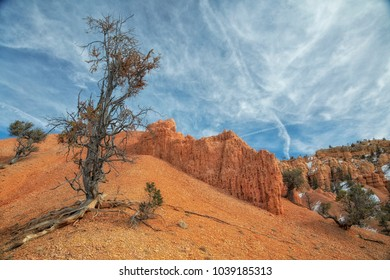 Red Canyon in southern Utah near Bryce canyon national park.