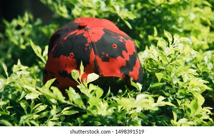 A red cap with textures kept on top of green leaves of plants