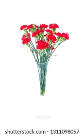Red carnations in a vase on a white background
