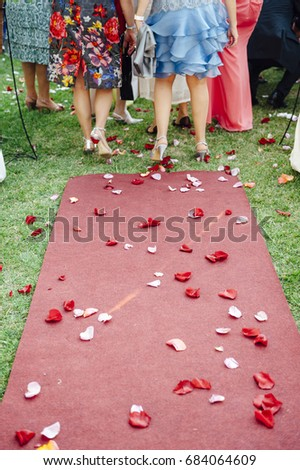 Red Carpet Covered Rose Petals After Stock Photo Edit Now