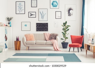 Red chair and blue carpet near couch in colorful living room interior with ficus and posters