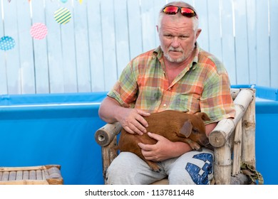 Red charming piglet sits on hands of elderly farmer. Copy space. 2019 year. Yellow pig. Healthy lifestyle in nature