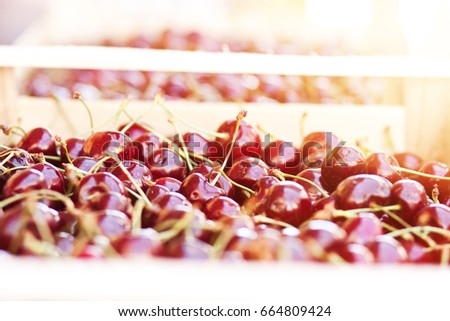 Red cherry on the market in wooden boxes. Berries. Vegetable market. Ripe berries