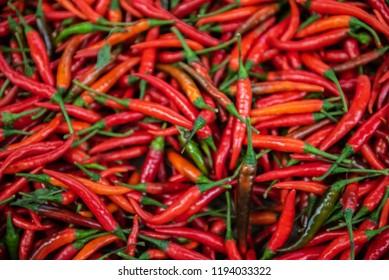 red chilli background. spicy Thai chili.