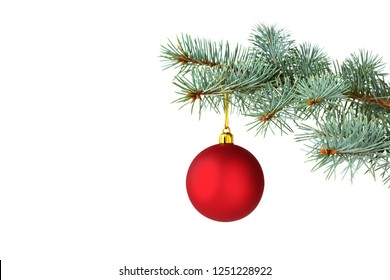 Red Christmas ball hanging on silver fir tree branches over white background. Christmas card.