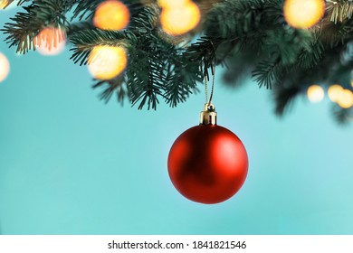 Red christmas ball hanging on a branch of a christmas tree on a blue background