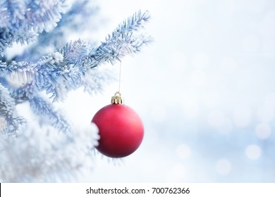 Red Christmas Ball Hanging on a Tree Branch in the Snow Winter Forest