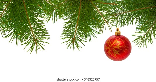 Red christmas ball on fir branch isolated on white background.Christmas ball on green spruce branch