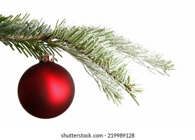 Red Christmas ball on a snowy branch isolated in front of a white background