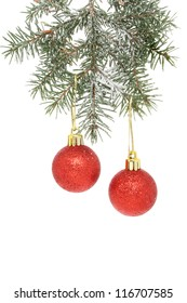 Red Christmas baubles hanging from a snowy Christmas tree branch
