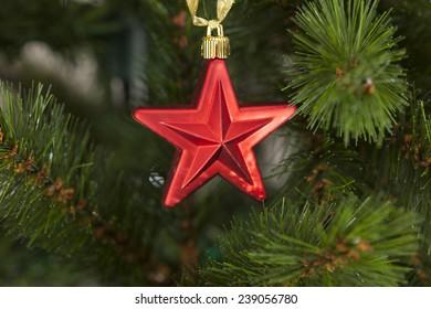 Red christmas star on christmas tree