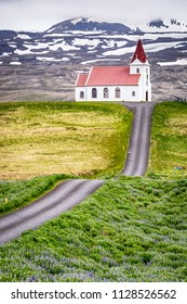 Red Church with leading road and purple flowers - Iceland