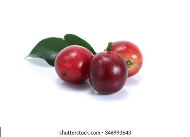 Red coffee beans isolated on white background