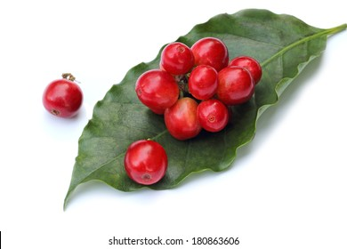 red coffee beans on leaf, isolated on white