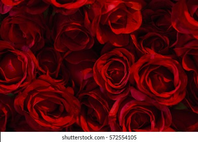 Red color Roses Background