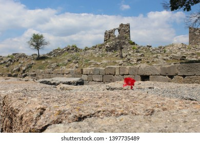 Red corn poppy and the ruined castle from Pergamon open air museum
