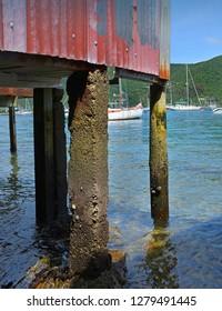 Red Corrugated Iron Boat Shed in Waikawa Bay, Marlborough Sounds, New Zealand