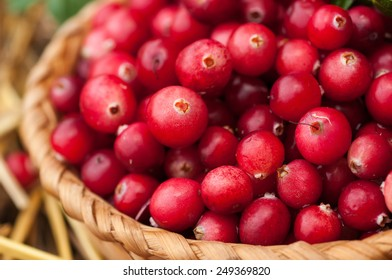 Red cranberries in a basket on straw.