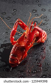 Red crayfish with water drops
