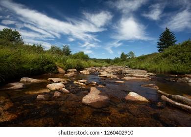 Red Creek in Dolly Sods Wilderness Area, Davis, West Virginia