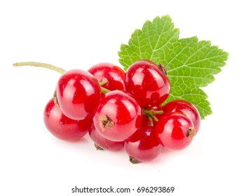 Red currant berries with leaf isolated on white background