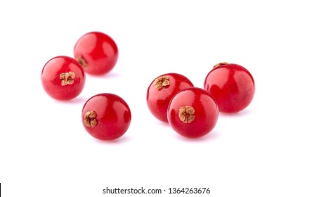 Red currant berries on White Background