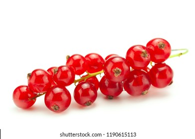 Red currant berry isolated on white background