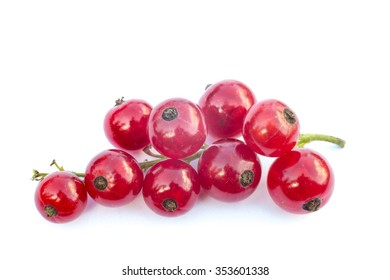 Red currant branch isolated on a white background. Isolated food series.
