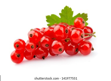 Red Currant close up isolated on white